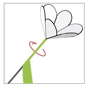Вырезаем из бумаги цветы