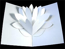 Фото открытки с объемным цветком