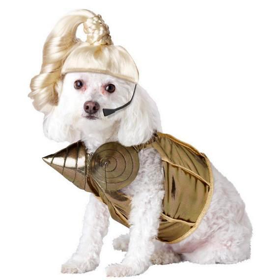 Костюм для собаки - Леди Гага