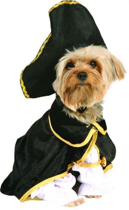 Костюм пирата для питомца