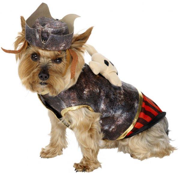Костюм пирата для собаки